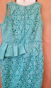 Lace dress/ pencil dress/ knee length
